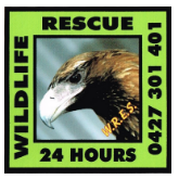 wildlife rescue and emergency service